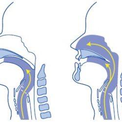La pronuncia delle vocali nasali. Alcuni trucchi