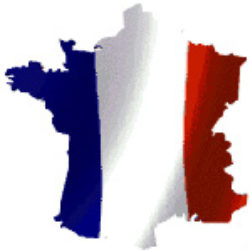 Posto dell'aggettivo e aggettivi particolari del francese