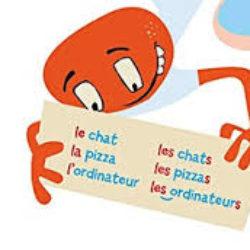Gli articoli definiti e indefiniti del francese