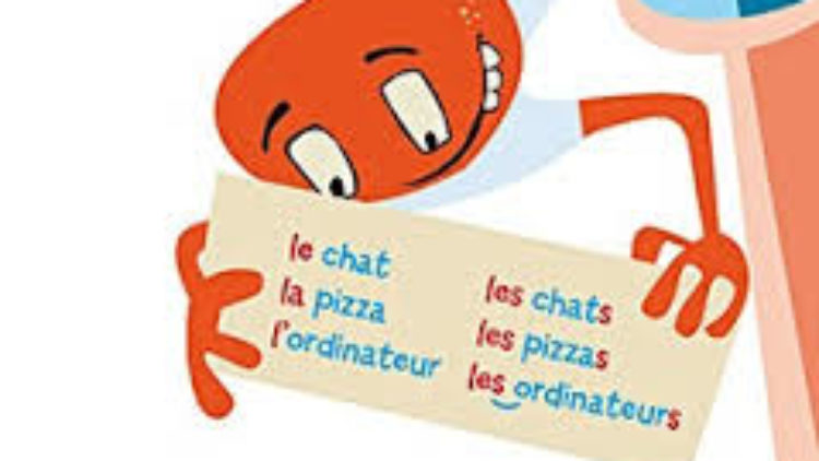 The definite and indefinite French articles