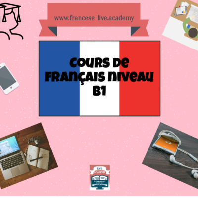 One-to-one B1.1 French course