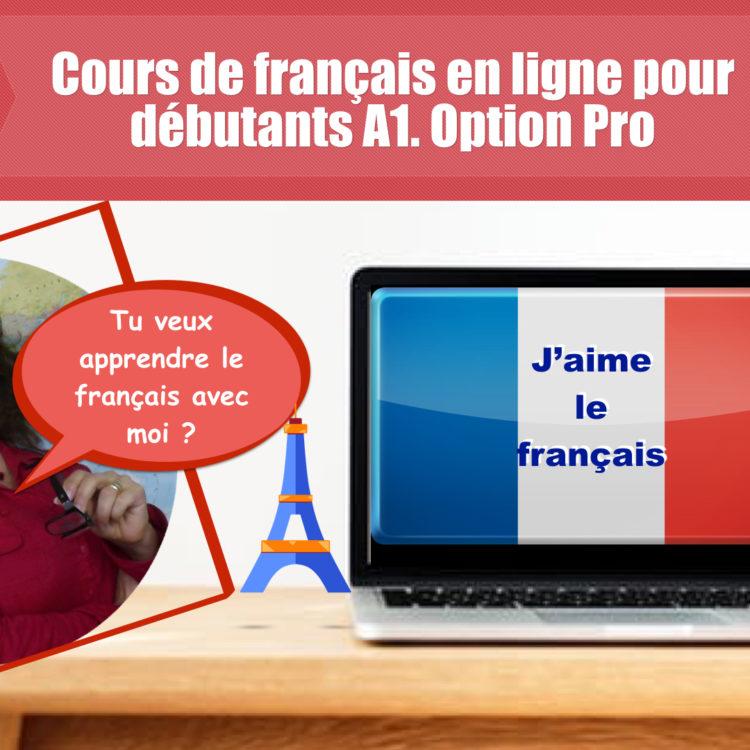 Cours de français en ligne complet pour débutants. Option Pro