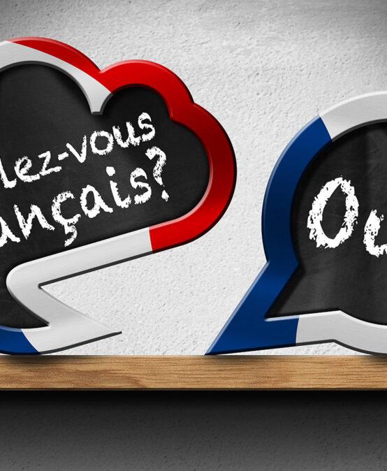 Videocorso di francese completo per principianti. Opzione pro